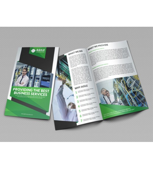 Customised Size Brochure